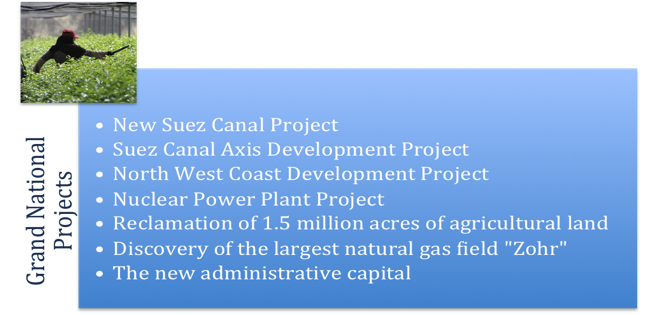 Fig 9 Grand projects